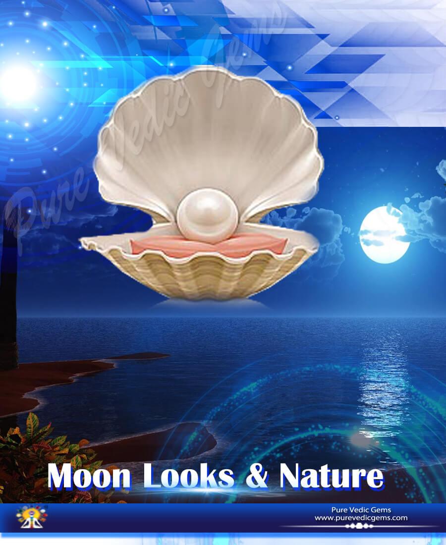 Moon Looks & Nature